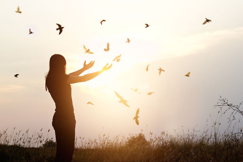 60006772 - freedom of life, free bird and woman enjoying nature on sunset background, freedom concept